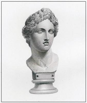 Apollo. Greek, Bust, goddess, diadem,