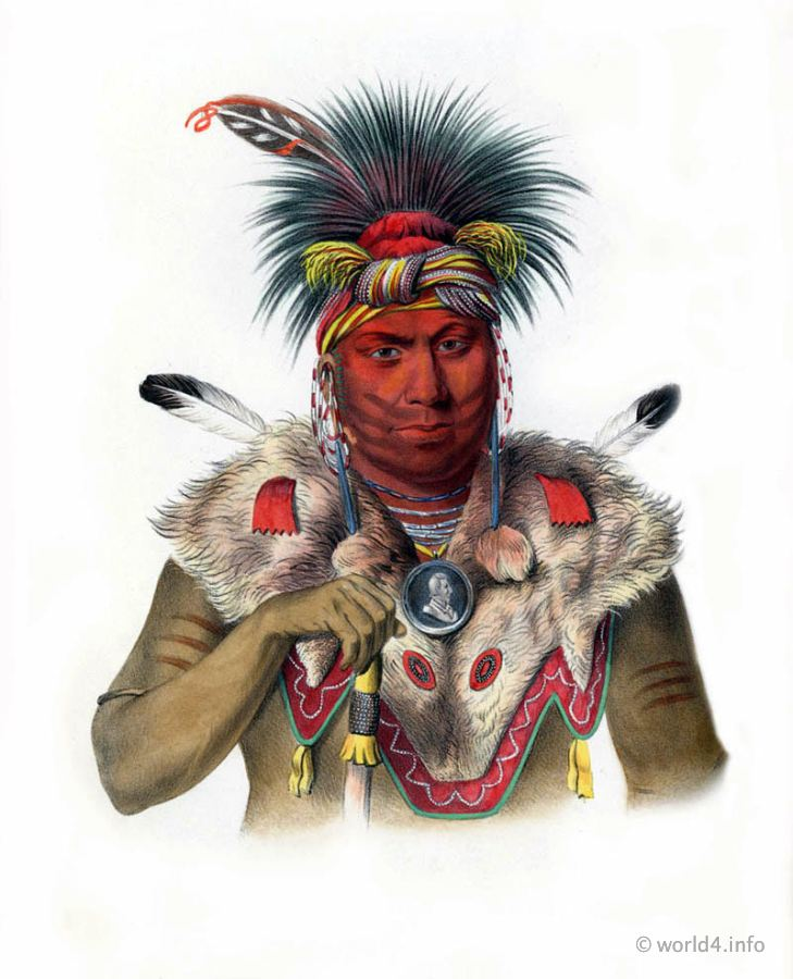 Fox, Chief, Natives, Native, America, Tribes, Indian, costumes