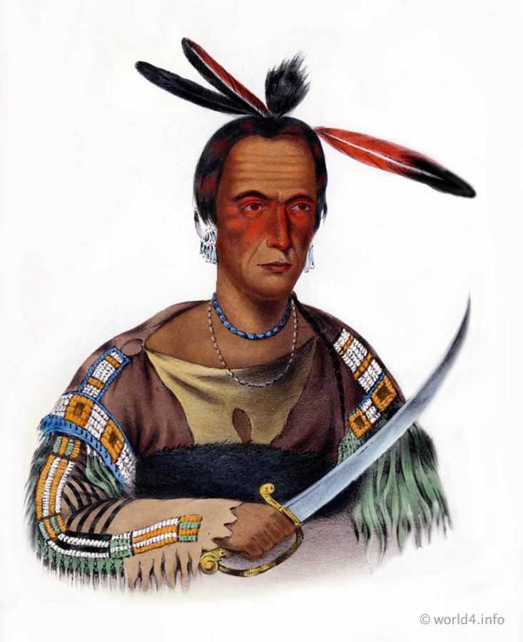 Sioux, Chief, Natives, Native, America, Tribes, Indian, costumes