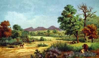 Inkwesi River. Africa. Zimbabwe. Rhodesia. Landscape.