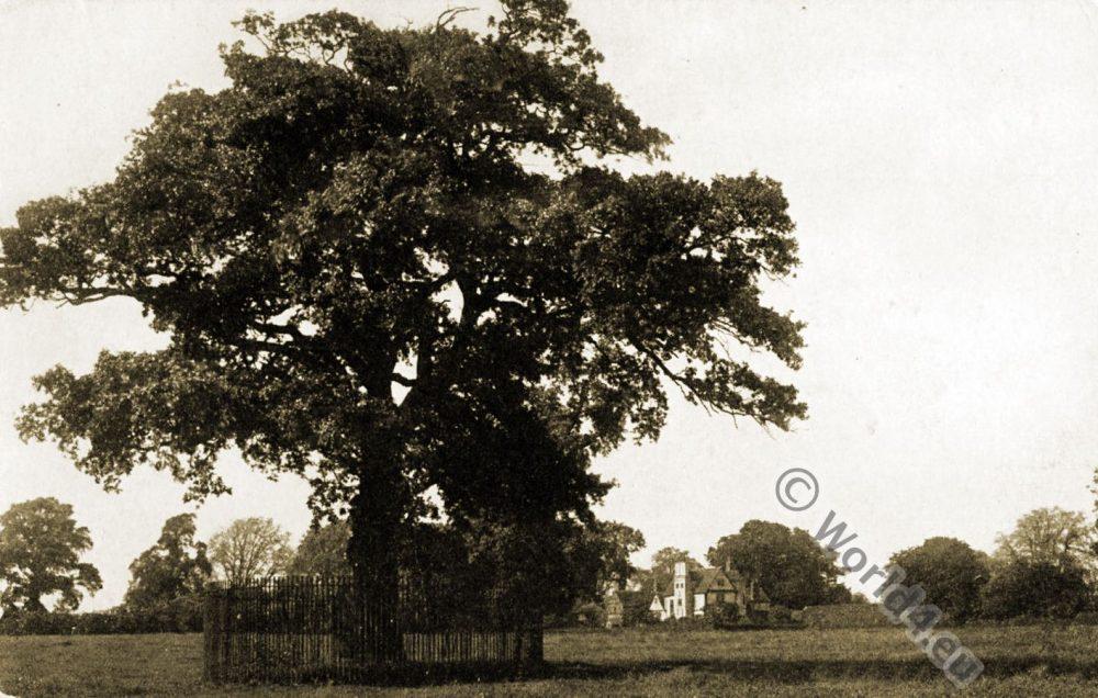 Boscobel, Royal, Oak, King, Charles II,