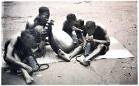 Bateke, tribe, Musician, African orchestra,