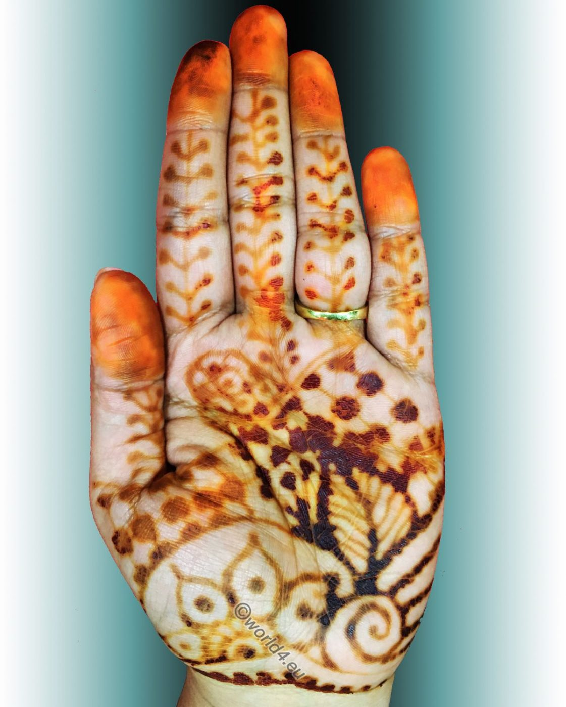 Mehndi, Maggy Pilania,  body art,