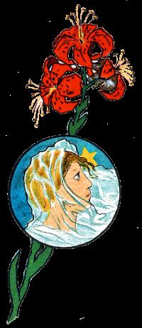 Illustration, lady, Shalott, ennyson,