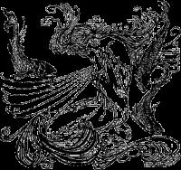 Odine, Nixe, Illustration
