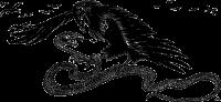 snake, eagle, fight, fairy, ilustration,