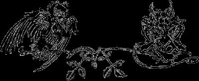 Crow, dwarf, Gnom, Illustration