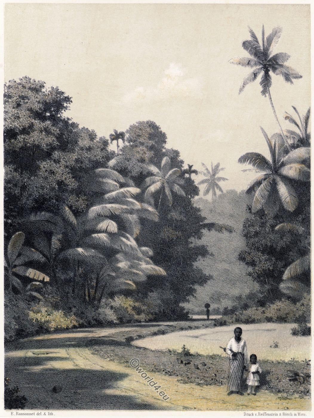 Landscape, Galle, Sri Lanka, Asia,