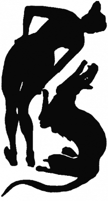 illustration, women, dragon