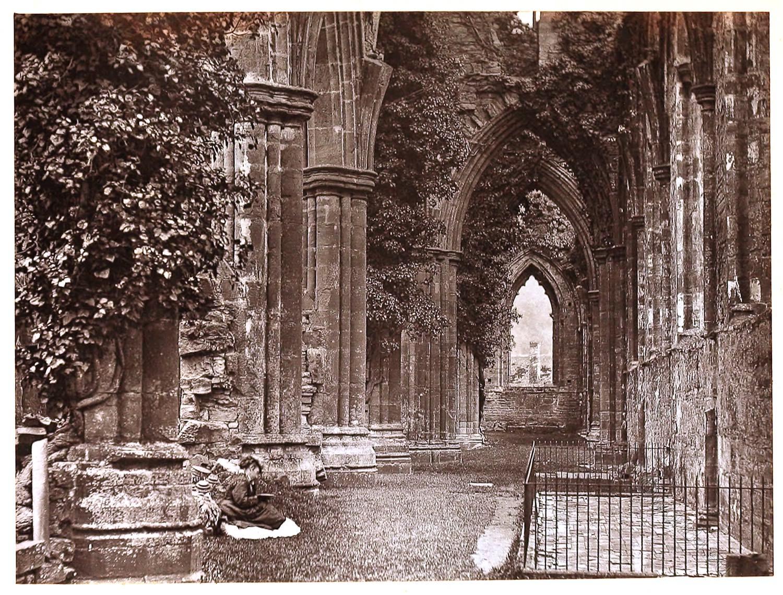 Tintern Abbey, Cistercian, Wales, specimen, Gothic, architecture,