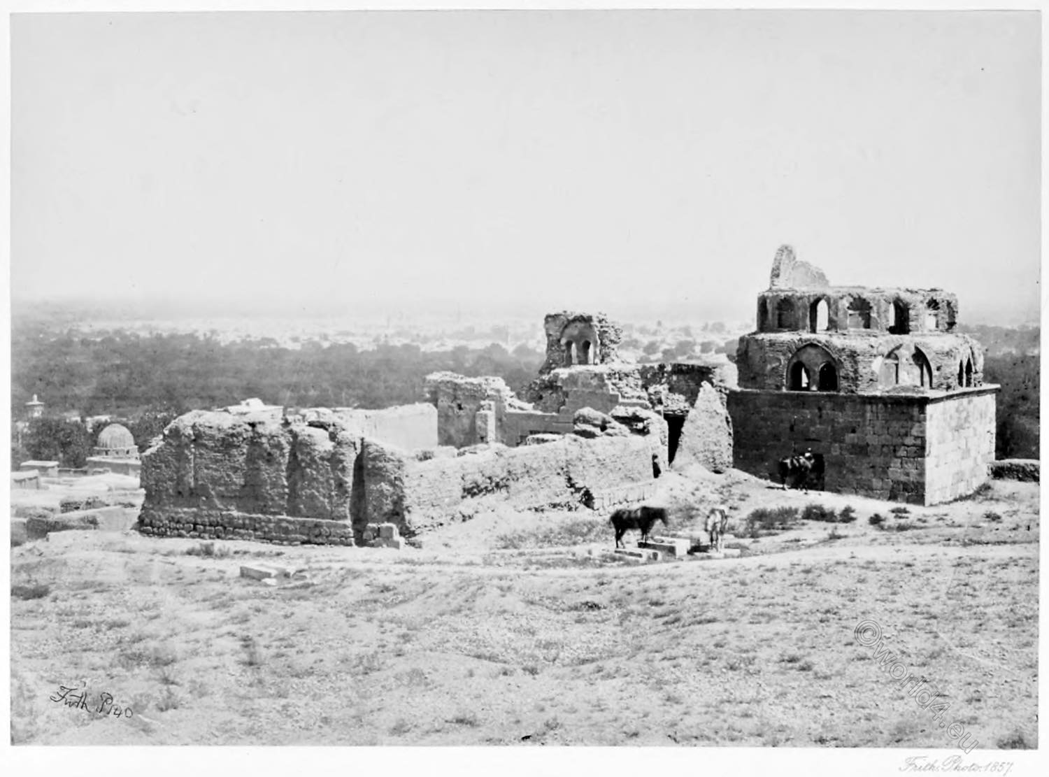 Damascus, Syria, Francis Frith, Holy, Land, Historical photograph, view