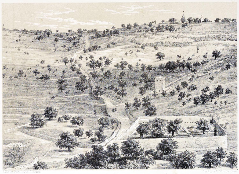 Mount, Olives, Garden, Gethsemane, Jerusalem, Holy Land, Ermete Pierotti,