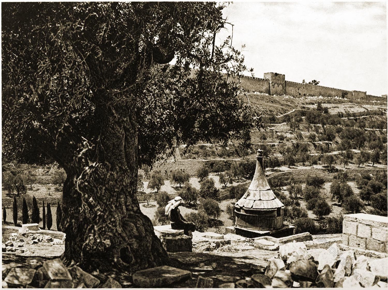Jerusalem, City, Wall, Mount, Olives, Landscape, Architecture, Palestine, Holy, Land,
