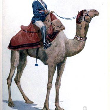 India, Camel-Sowar, Bengal, Lancers, soldier, camel, military, asia,