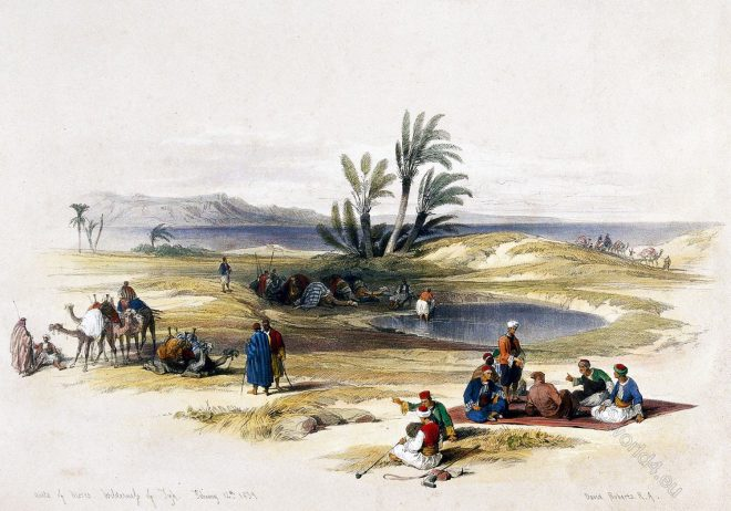 David, Roberts, Eyun, Musa, Wells, Moses, Travelers, Holy, land, Palestine,